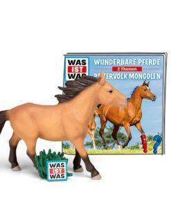Reitervolk Mongolen
